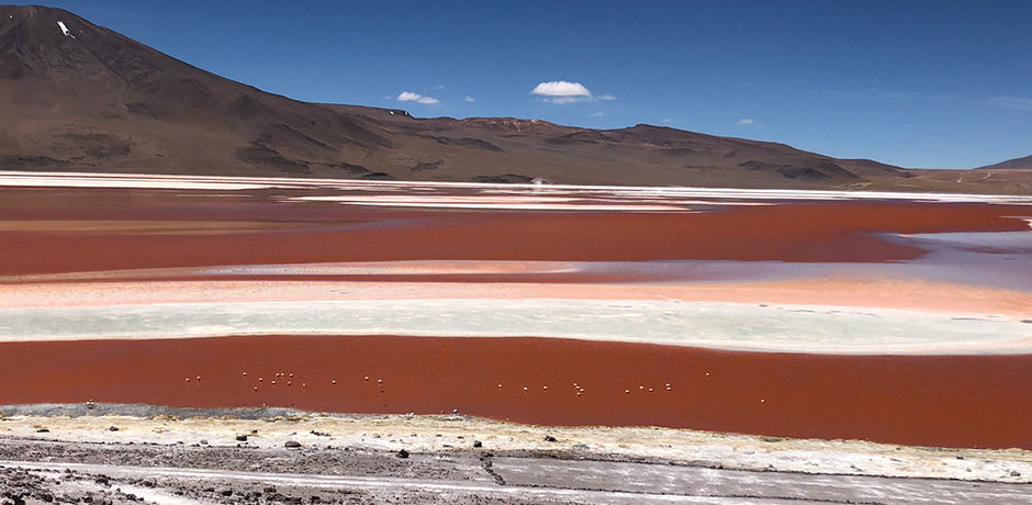 In the southwest of Bolivia, near the Chilean border, the Laguna Colorado or Red Lagoon features borax islands and waters that are red from sediment and algae.