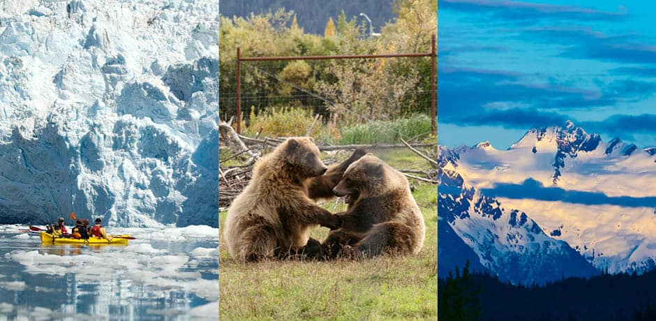 Courtesy Travel Alaska. From Left: Brian Adams, Kenai Fjords National Park, Bears Playing. Far Right: Courtesy Blaine Harrington III, Haines