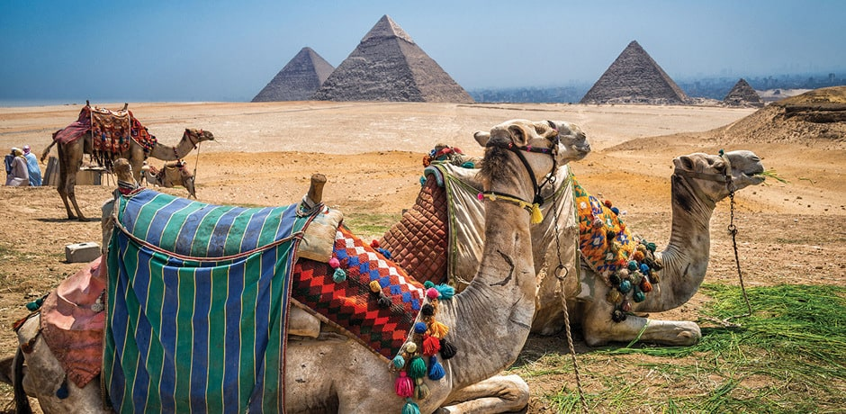 Treasures of Egypt 2019