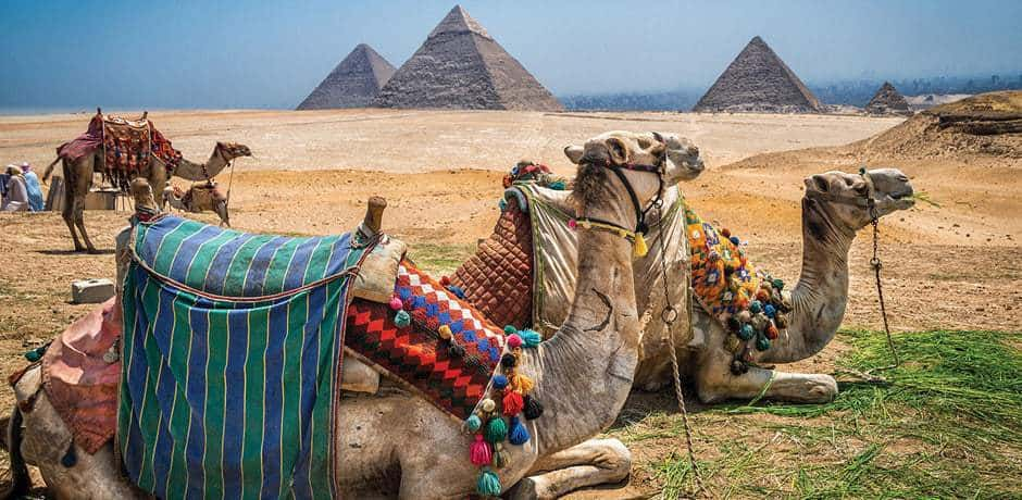 The Egyptian Pyramids can be seen by camel or caravan.
