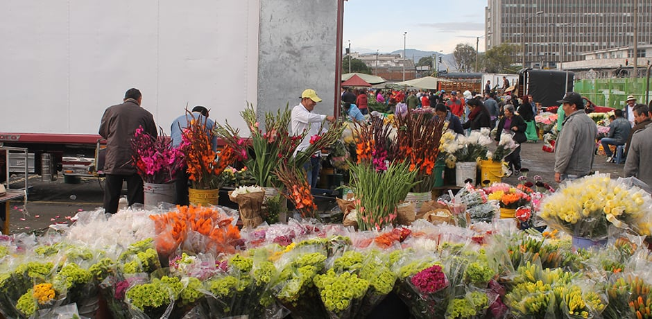 Flowers, one of Colombia's top exports, are available for sale by the thousands each morning at Paloquemao Market