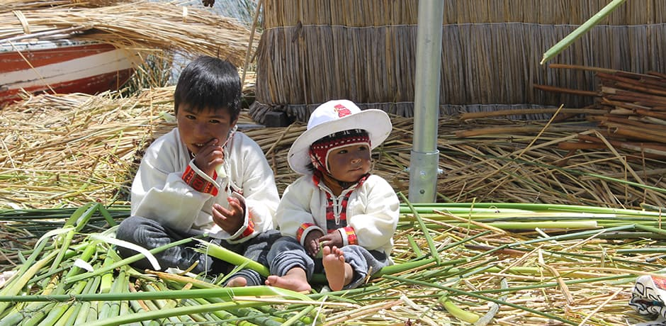 Snacking on junco reeds of the Uros Islands