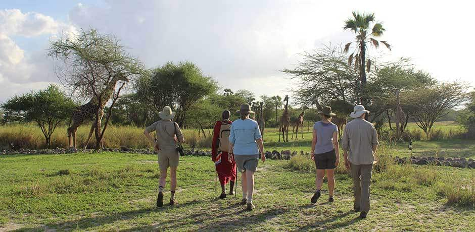 Eliza and her group on a walking safari led by a Masai guide