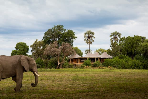 A Legendary Safari Camp is Back in Botswana