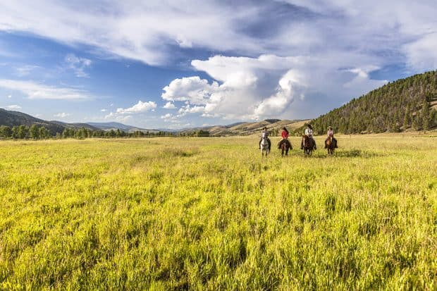Horseback riders in a green field near The Ranch at Rock Creek in Montana