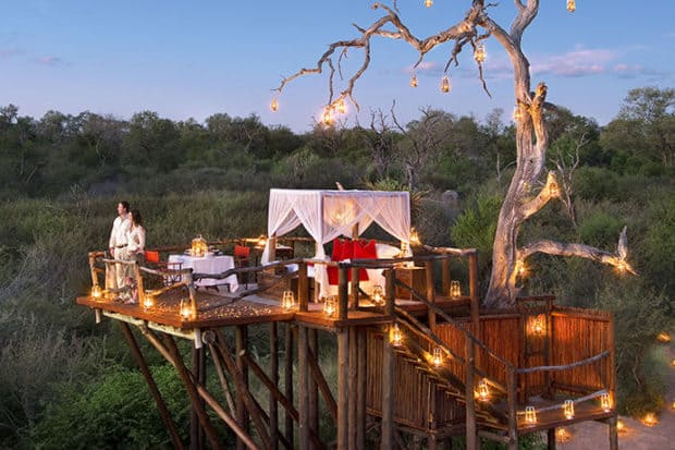 Top 10: The Best Treehouse Hotels in the World