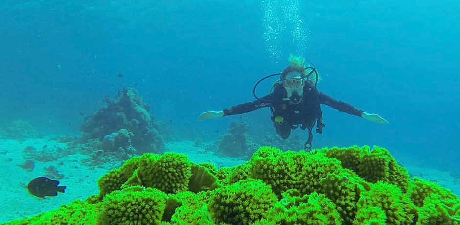 Indagare Operations Manager Rose Allen scuba diving in the Red Sea off the coast of Jordan. With the world's northernmost coral reef ecosystem, the Red Sea has hundreds of different species of corals, which attract incredibly diverse marine life, from dolphins, turtles and sea cows to tropical fish.