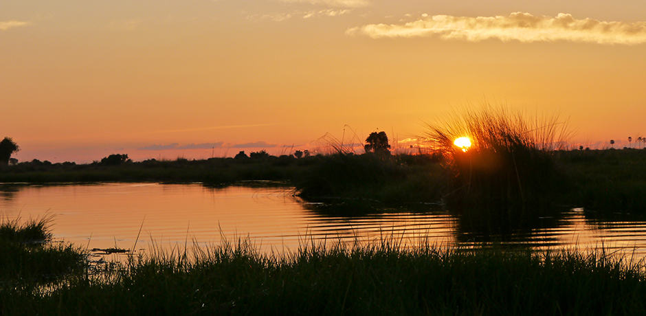 Dusk in the Okavango Delta