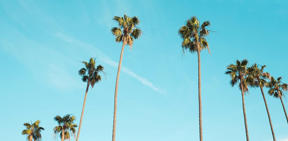 West Coast, Best Coast: Why to Travel to L.A. This Summer