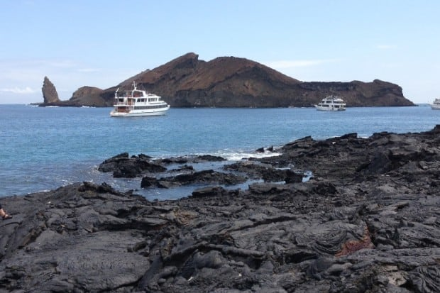 Galápagos: Ten to Know