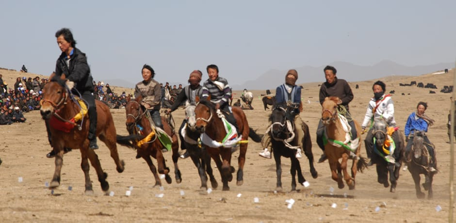 Horse race in Ritoma