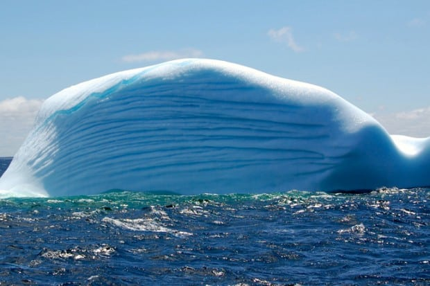 From early May through the end of June, the Labrador Current, which flows off the north coast of Fogo Island, brings floating icebergs.