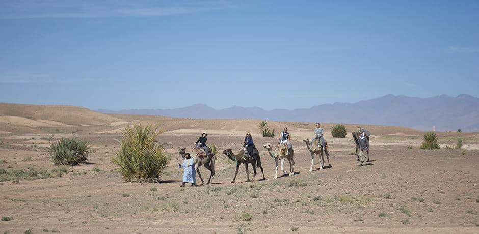 The desert landscape is perfect for hiking and camel trekking with the snow covered Atlas mountains as a backdrop.