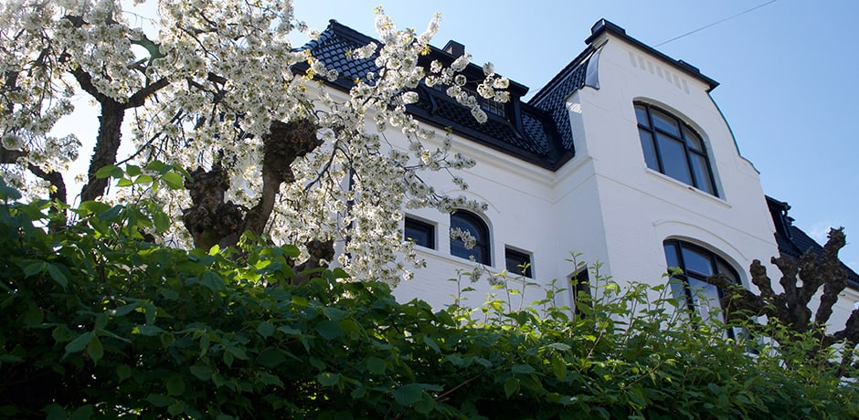The most upscale residential neighborhood in Oslo, the Bygdoy peninsula is sprinkled with stunning homes (the most posh of which are painted white, historically the most expensive color),