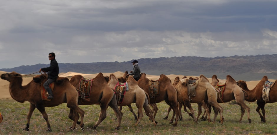 Discovering Mongolia