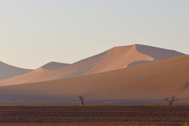 Out of Africa: Namibia Up Close