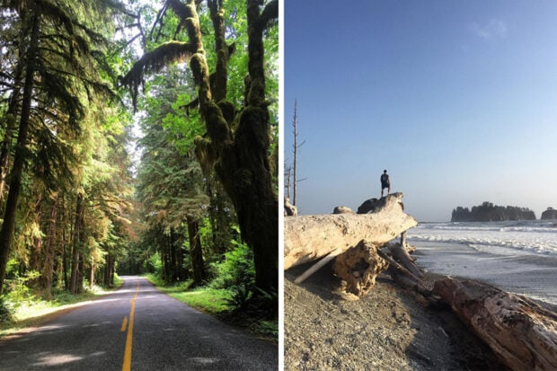 Olympic National Park. Photos by Peter Schlesinger