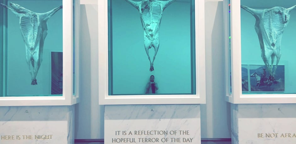 One of several Damien Hirst pieces at Astrup Fearnley