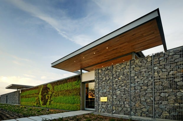 Cavalli Wine And Stud Farm Restaurant Cape Town South Africa