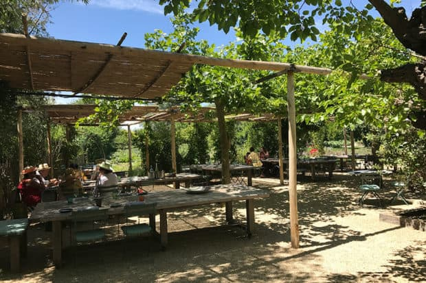 Lunch outside at La Chassagnette in Provence, France