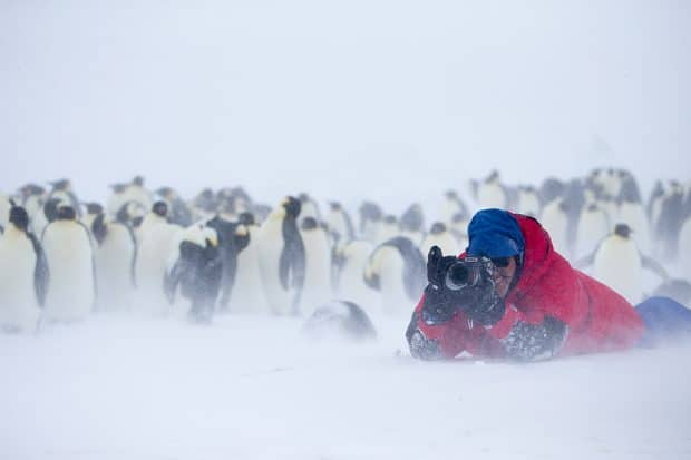 Fishman in Antarctica, Courtesy Roger Fishman