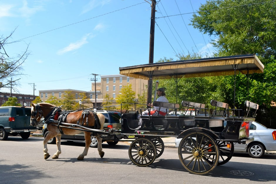 Indagare Tours: Carriage Tours