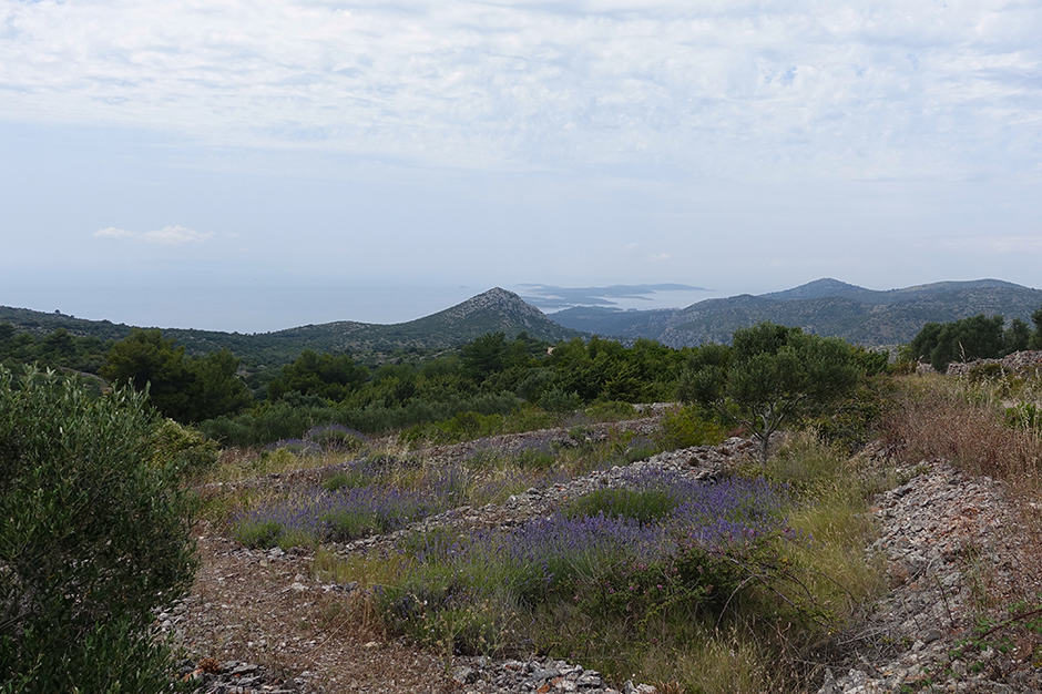 Indagare Tours: Hiking Hvar
