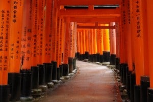 Image result for Fushimi Inari Taisha