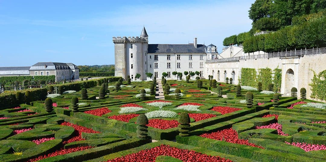 Castles & Wine: The Loire Valley