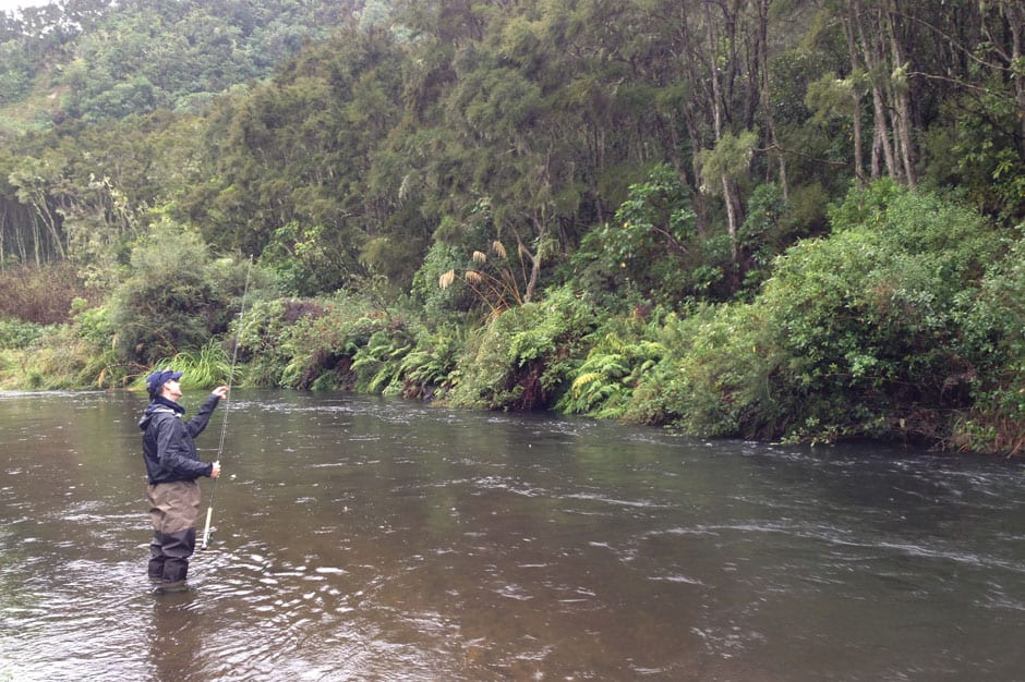 Fly Fishing Taupo