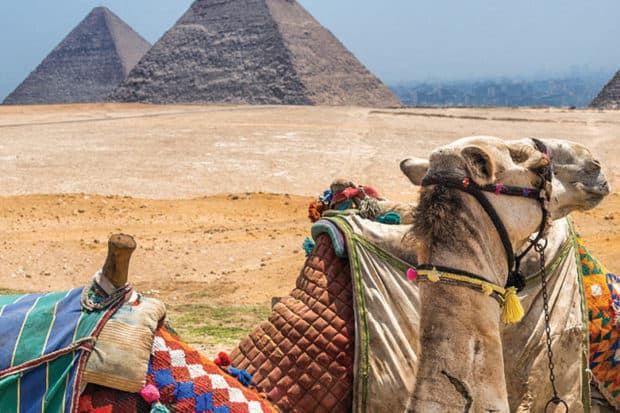 egypt travel package trip october