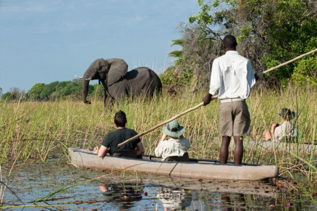 An elephant crossing the delta at Xigera Safari Lodge. Courtesy Wilderness Safaris, Photo by Olwen Evans.