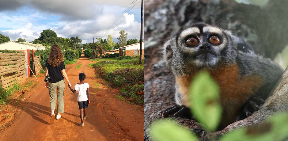 Indagare's Rose Allen working with Maloto in Malawi; a slow loris in the Amazon Rainforest