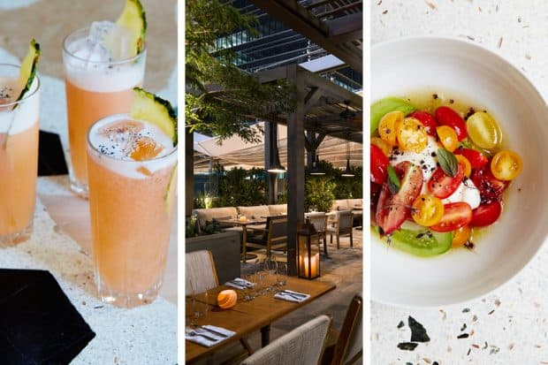 From left: Cocktails and Marion, the alfresco dining area at Quinto La Huella, tomato salad at Marion