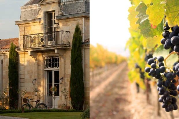 Bordeaux Wine Region: A Tale of Two Banks