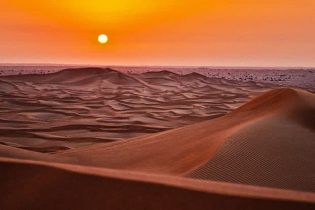 Just Back From: The Sahara Desert