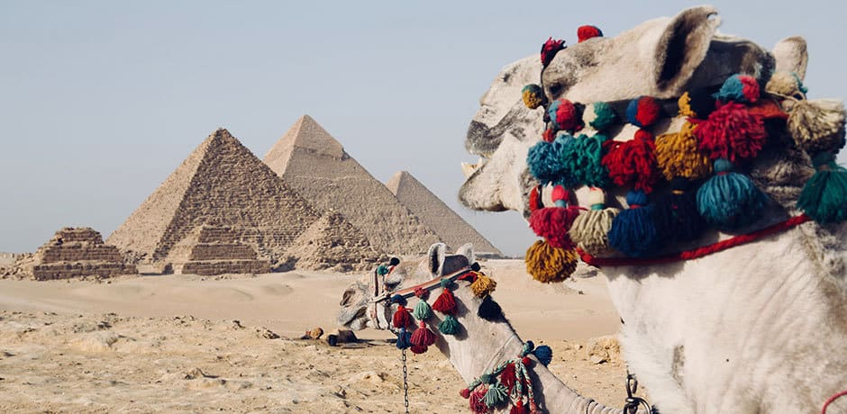 5 Reasons to Travel to Egypt Now: Travel Tips and News