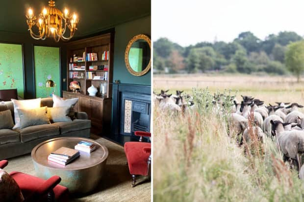 From left: The Heath signature suite and sheep roaming the 400 acres at Heckfield Place