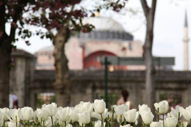 Istanbul: Lay of the Land