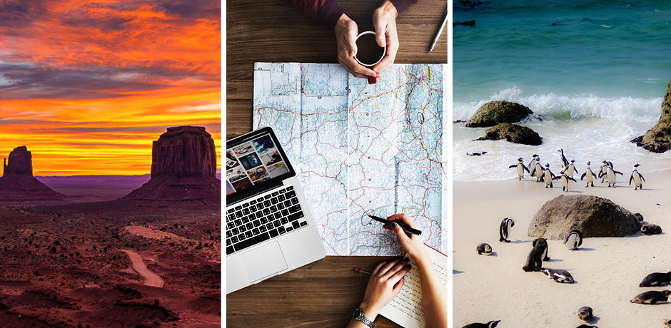 From left: Monument Valley, Utah; planning out an upcoming trip; penguins at Boulders Beach, Cape Town